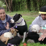 Judie lives with her partner and three dogs in Los Angeles