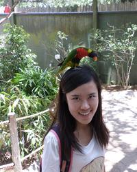 Xiaxia Yang